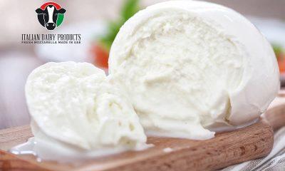 Italian Dairy Products: la Mozzarella in carrozza